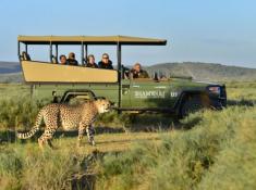 Shamwari Riverdene Safari 3
