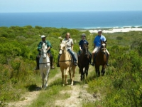 grootbos-horse-riding