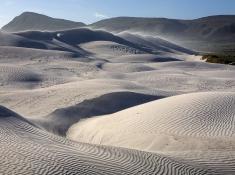 grootbos-dunes-near-uilenskraalmond