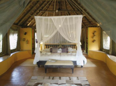 jacis-safari-bedroom