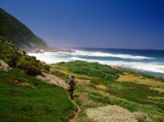 palms-wilderness-hiking