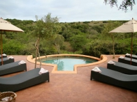 safari-lodge-pool