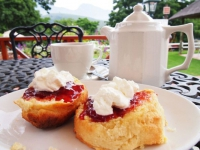 Eight Bells Tea and Scones