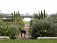 Hawksmoor House Garden