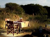 Mziki Lodge Private Dinner