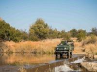 Mziki Lodge Safari Drive