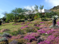 Retreat at Groenfontein Garden