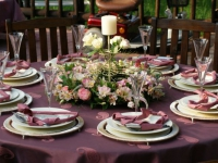 Tzaneen Country Lodge Weddings 150