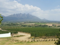Val du Charron Vineyard Views