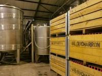 VDC Cellar