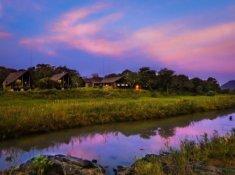 Amakhosi-Safari-Lodge-6