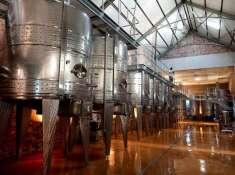 Babylonstoren-Wine-Cellar