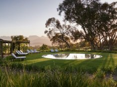 Boschendal-Swimming-Pool-Orchards