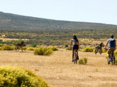 Bushmans Kloof Bicycling