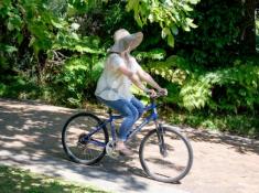 Cellars Hohenort Biking
