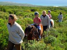 grootbos-pony-rides