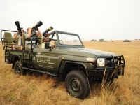 cheetah-plains-photographic-safari