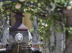 Franschhoek-Country-House-Fountain-Terrace-3