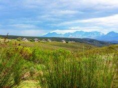 Gondwana-Fynbos-Villas