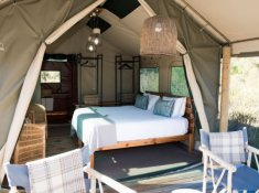 Gondwana-Tented-Eco-Camp-Tent-Interior