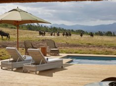 Gondwana-Ulubisi-House-Pool-Area-2