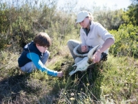 Gondwana Junior Ranger Activity