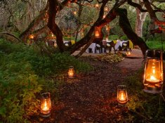Grootbos-Forest-Lodge-28