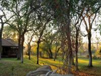 Idube Game Lodge Camp