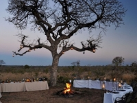 Idube Game Lodge Bush Dinner