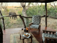 Idube Game Lodge Elephant Sighting from Deck