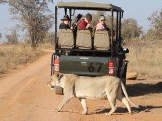 Inzalo-Safari-Lodge-25