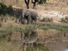 Inzalo-Safari-Lodge-26