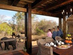Camp-Jabulani-Zindoga-Villa-Elephant-Viewing