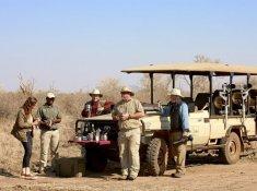 Jacis-Lodges-Safari-Stop