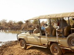 Jacis-Lodges-Safari