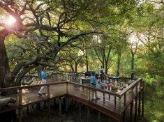 Jacis-Safari-Lodge-Dining-2