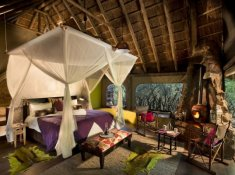 Jacis-Safari-Lodge-Suite