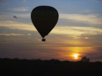Kapama Game Reserve Balloon Safari
