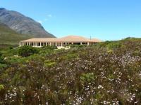 Kapensis Landscape