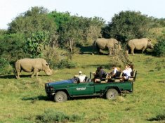 Kariega-River-Lodge-Rhino-Sighting