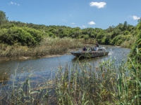 Kariega Game Reserve River Cruise 2