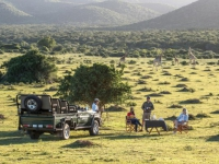 Kariega Game Reserve Sundowners