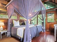 Kosi-Forest-Lodge-Twin-Room