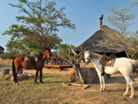 Kwafubesi Tented Camp Horseback Safaris