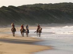 thanda-horse-riding-at-sodwana
