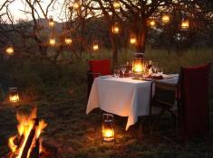 thanda-private-bush-dinner