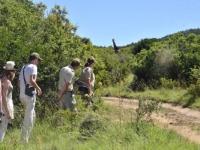 Lalibela Game Reserve Game Activity 3
