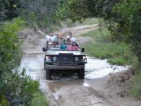 Lalibela Game Reserve Game Drive 5