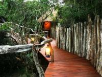 Lalibela Tree Tops Walkway
