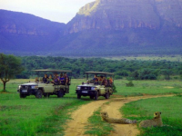 Legend Golf & Safari Resort Game Drive